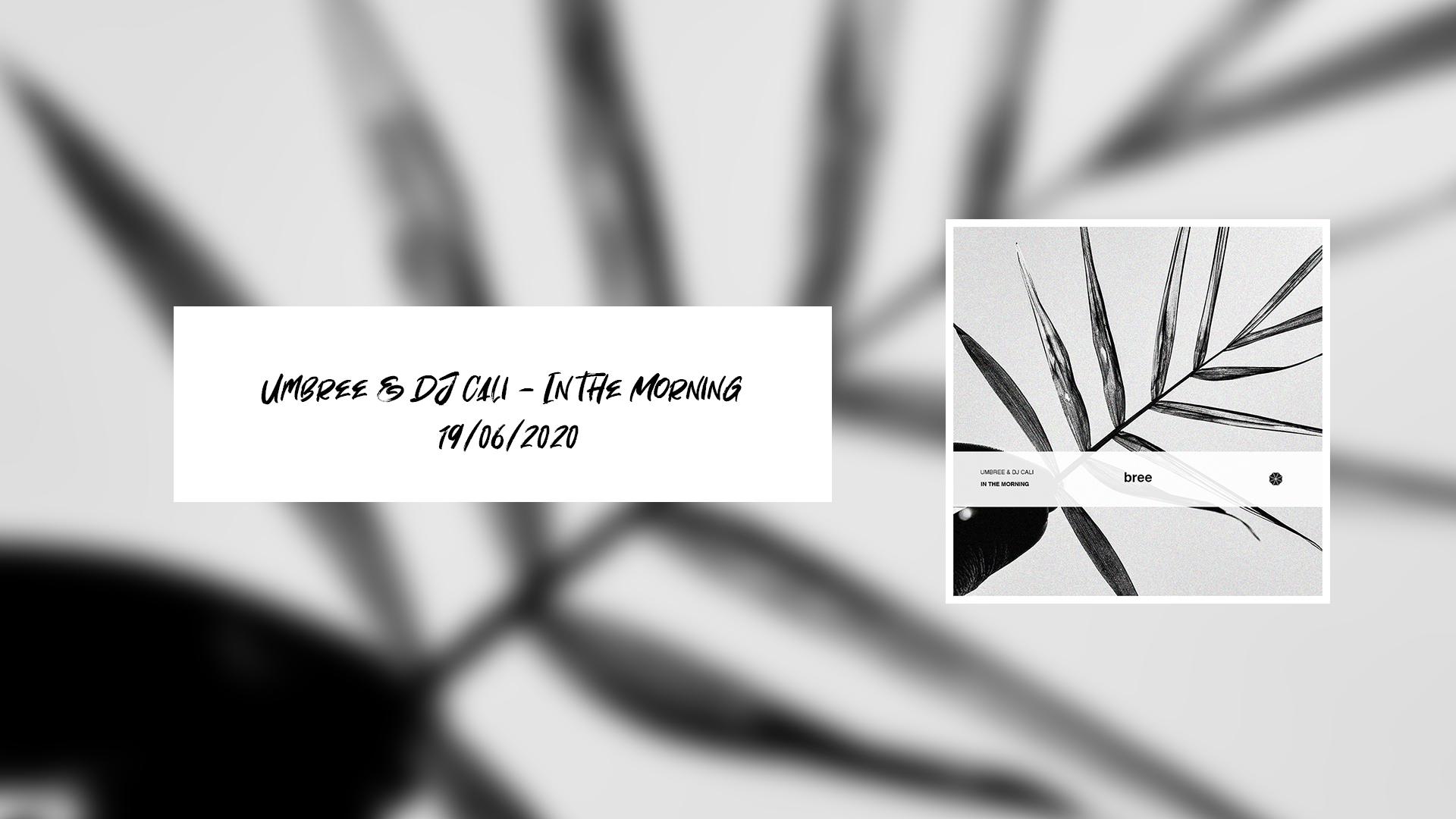 Cover de la collaboration entre Umbree et DJ Cali
