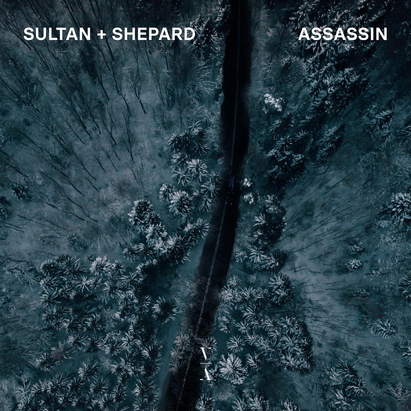 Sultan + Shepard Assassin Cover